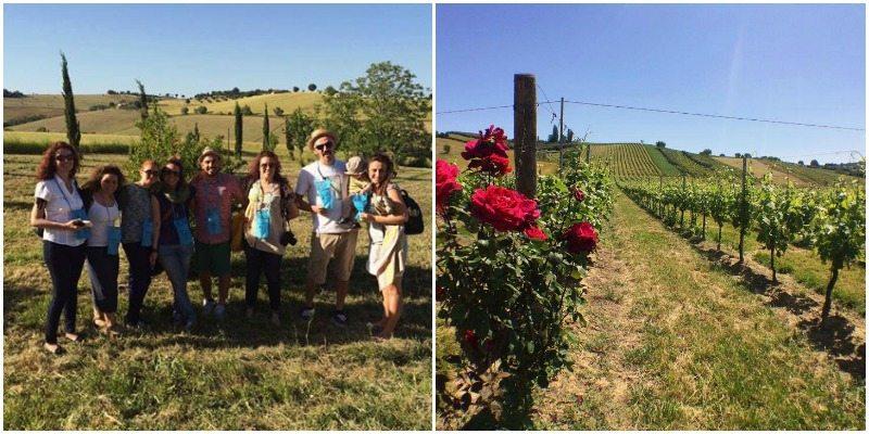 I blogger italiani assaporano il buon vino delle Marche e scoprono le vigne vicino Senigallia