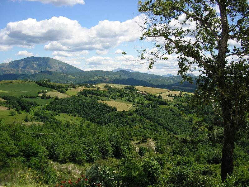 Una veduta delle colline di Apecchio. © Apecchio, città della birra