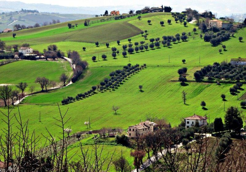 Le dolci colline marchigiane nei dintorni di Corinaldo © Marche Tourism su Flickr