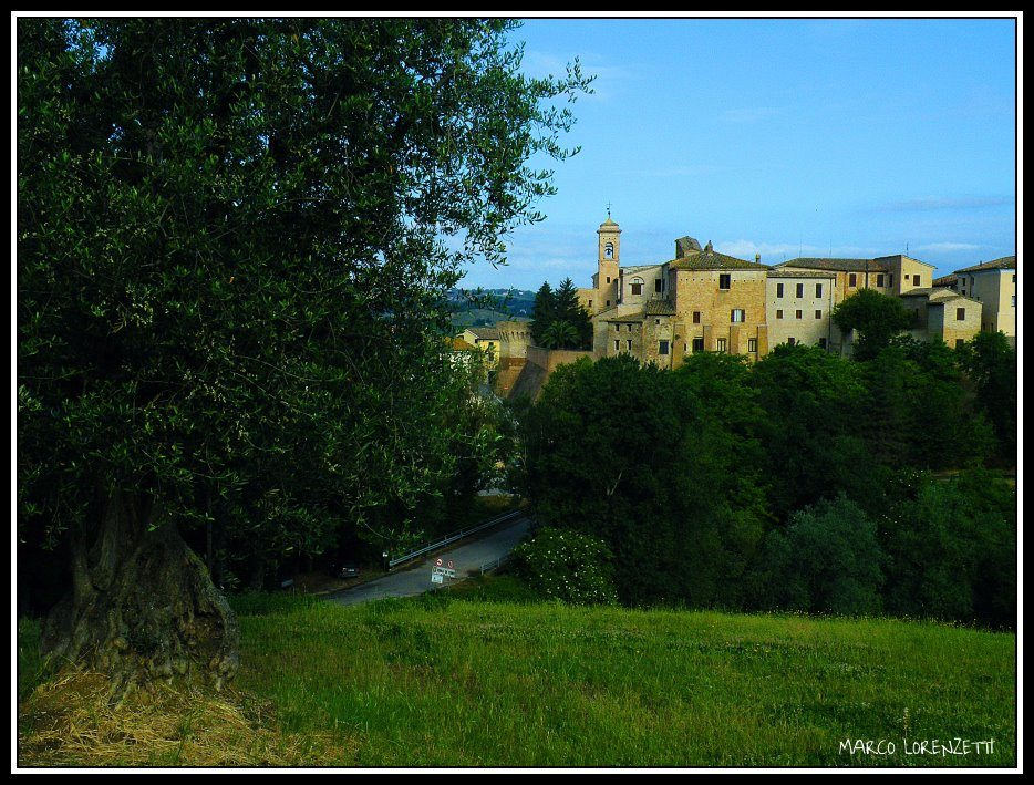 Veduta di Serra de' Conti © Marco Lorenzetti su Panoramio