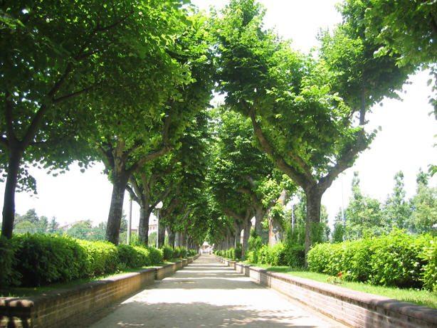 Il romantico viale del Parco Celeste Erard, Maiolati Spontini (AN)