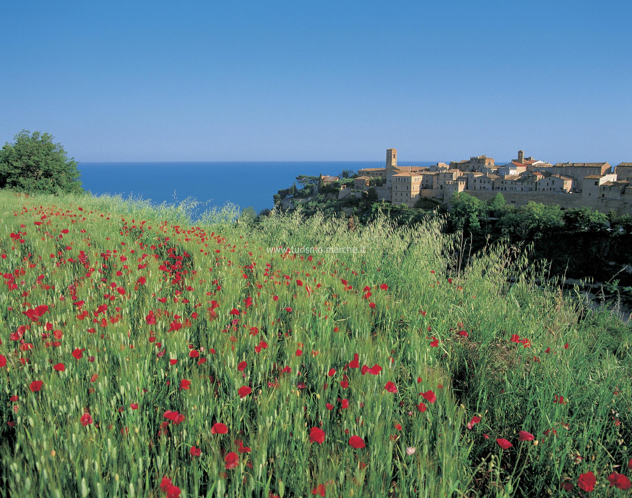 Torre di Palme (FM) © Marche Tourism