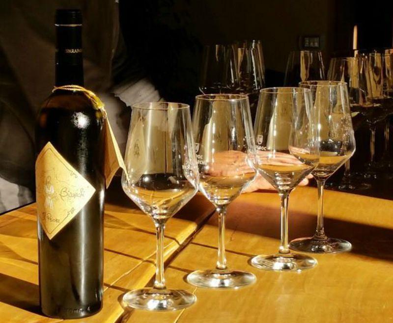 vino-verdicchio2