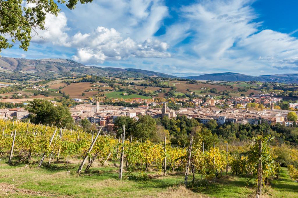 La bella città di Matelica e le sue vigne. Foto © Maurizio Paradisi