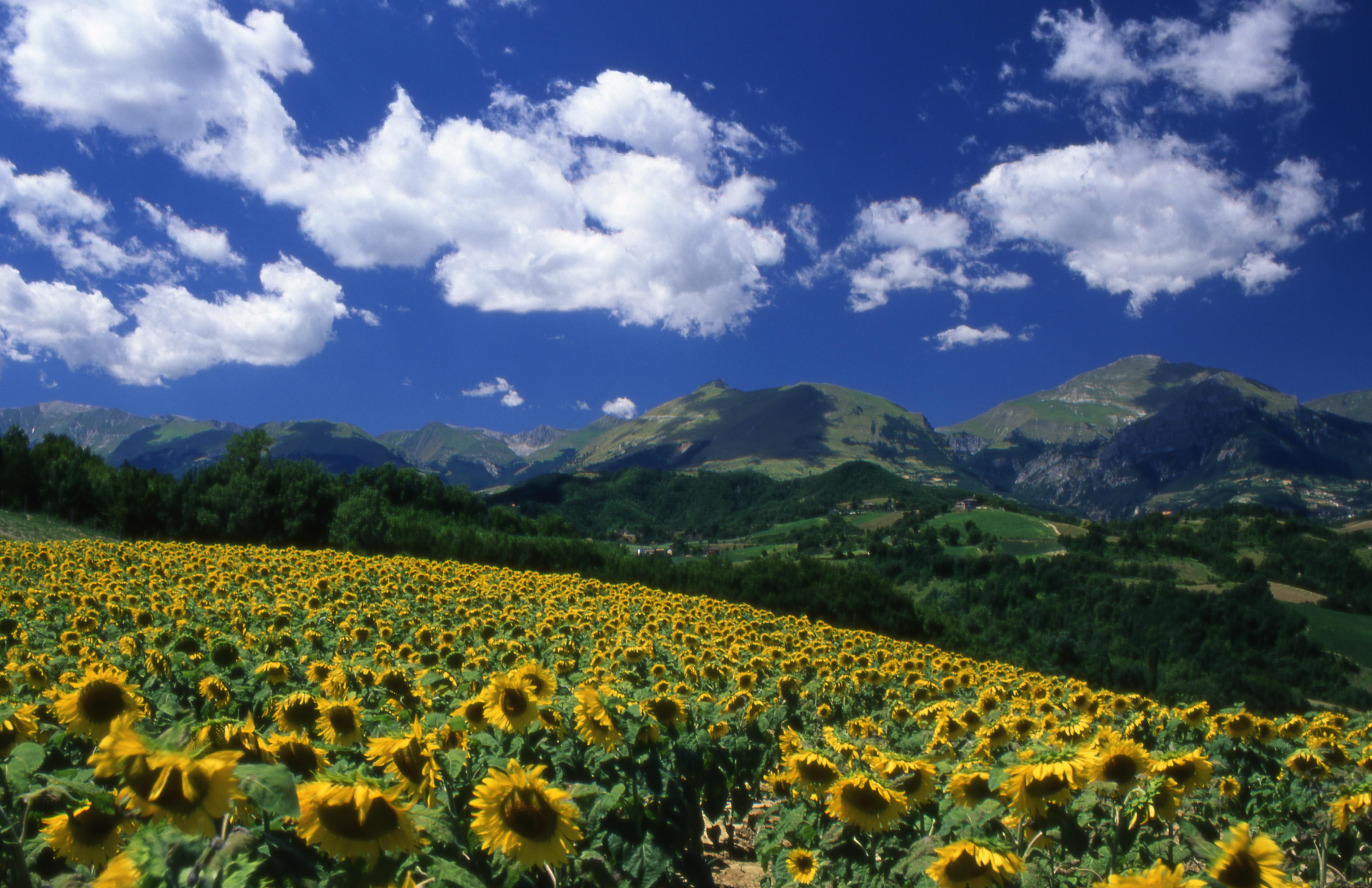 Parco Nazionale dei Monti Sibillini - Foto © Giorgio Tassi