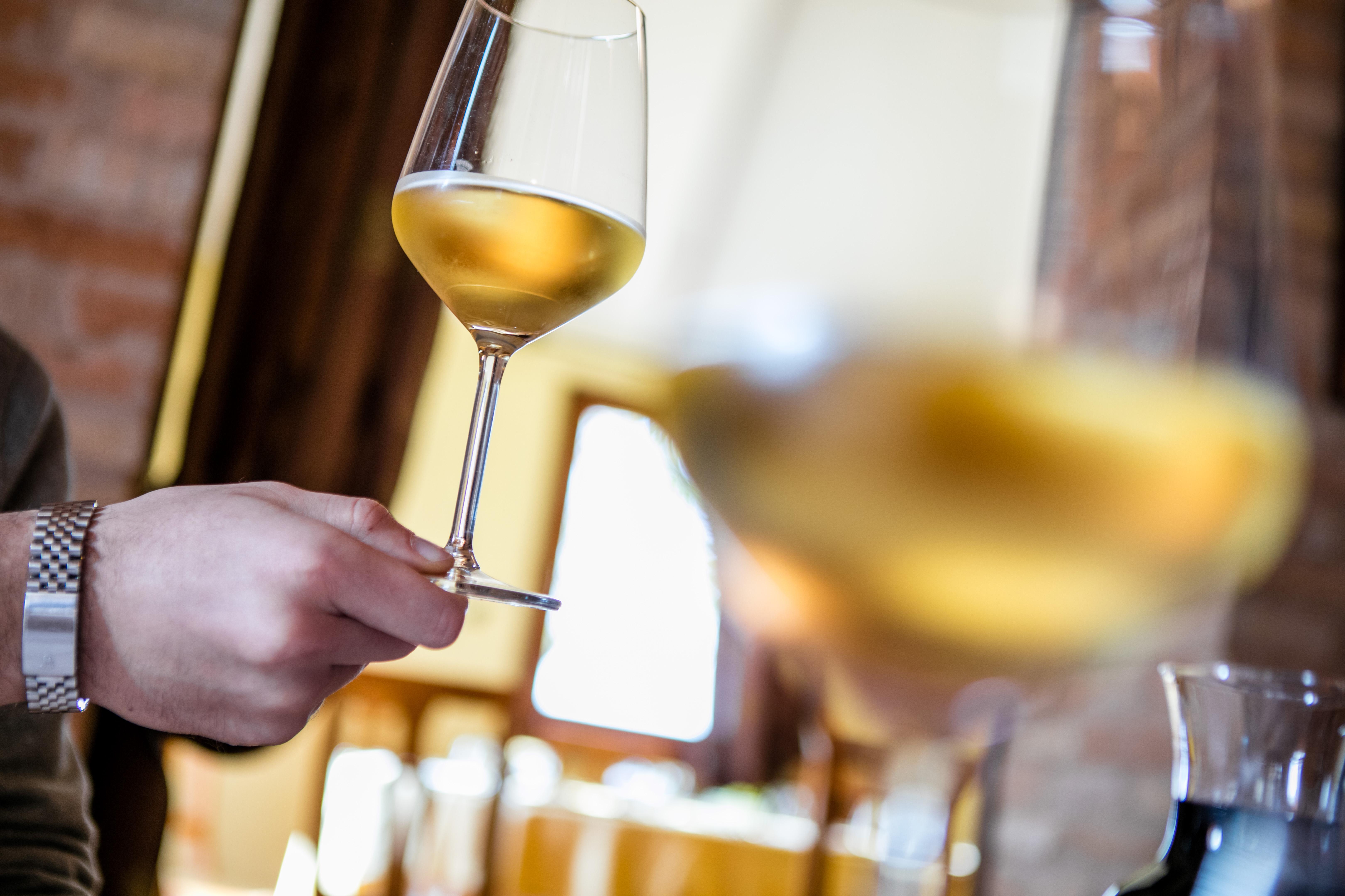 Il vino delle Marche - Foto © Maurizio Paradisi