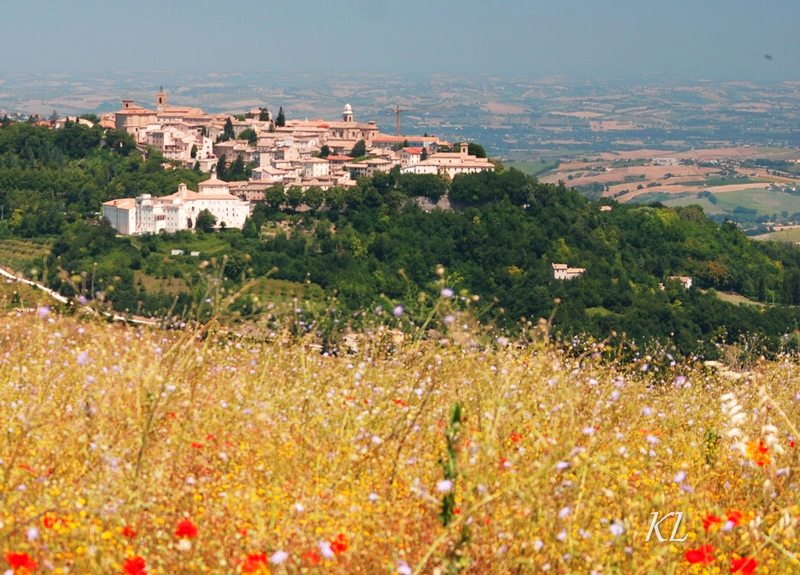 panorama-Cingoli-katia-lucchetti