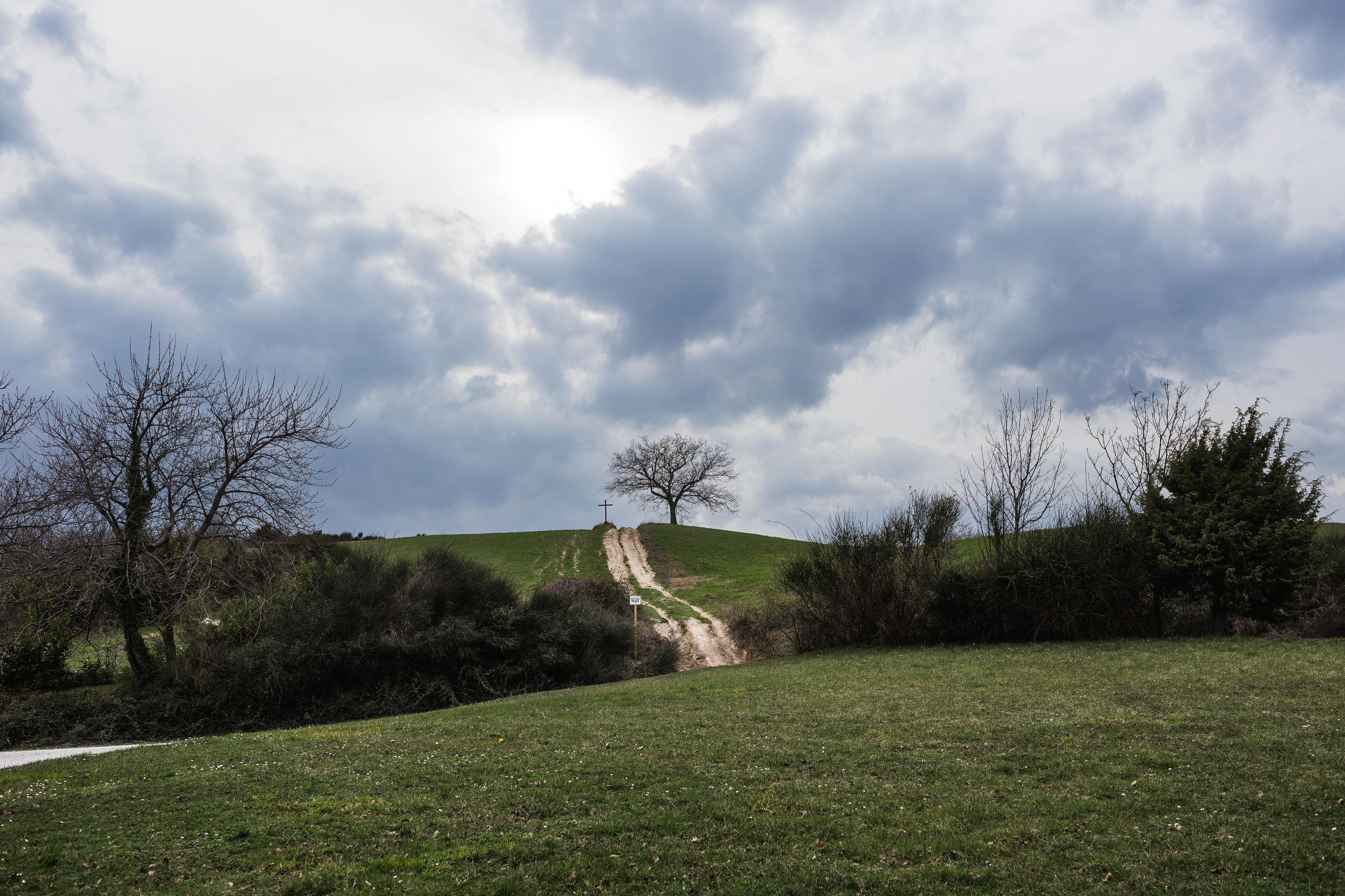 Una foto della Riserva di San Settimio, Arcevia - Foto Francesco Marini