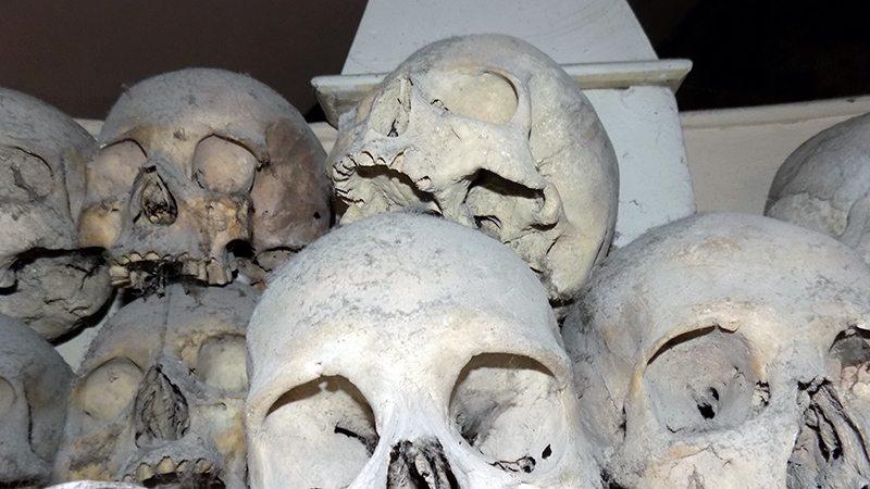 Dettagli dei resti presenti nella chiesa di Urbania