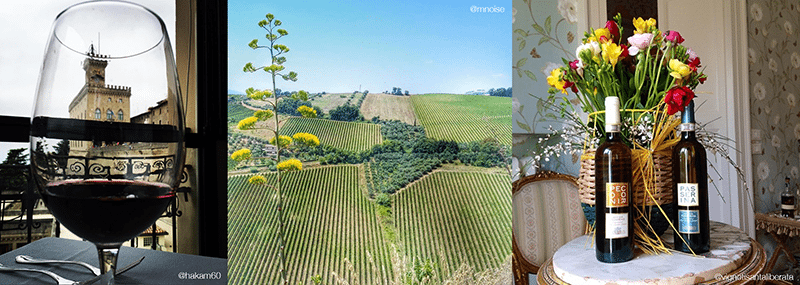 I tipici vini di Offida e una delle vedute mozzafiato