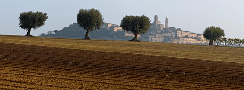 Montecosaro, uno dei Borghi più Belli d'Italia