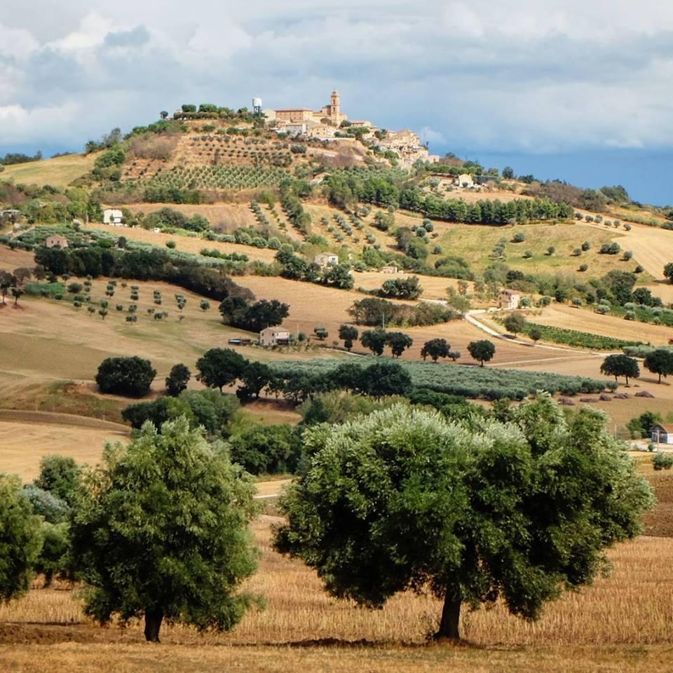Montecosaro e lo splendido paesaggio circostante. Foto di © Sabrina Casson