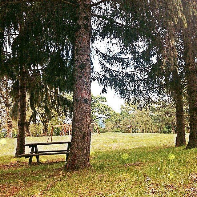Parco Simone e Simoncello