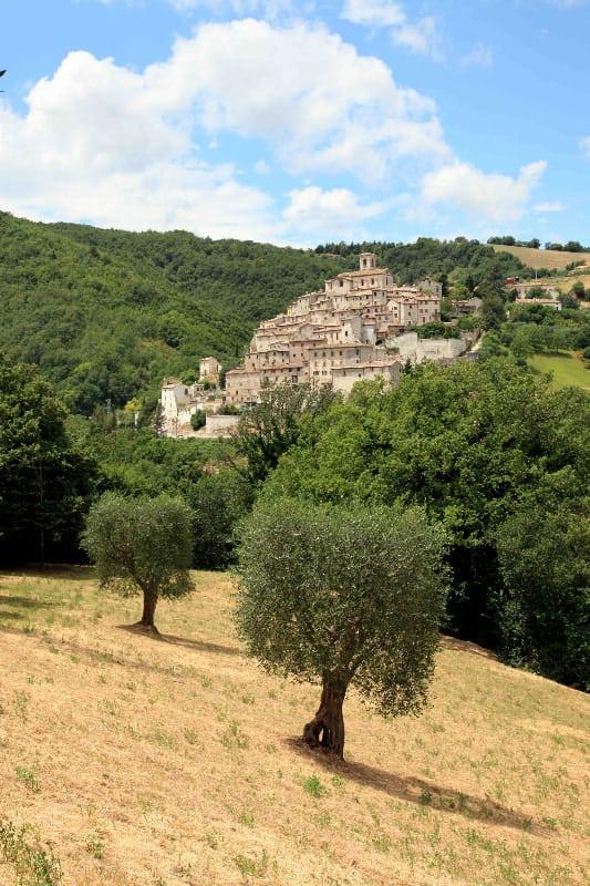 I castelli di Arcevia: Palazzo