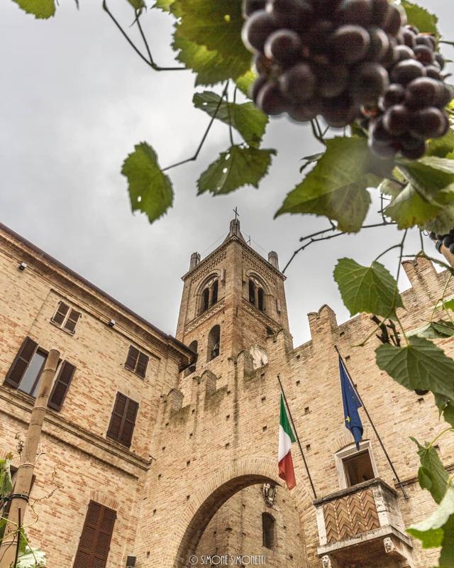 Campanile di Montecassiano con grappolo d'uva