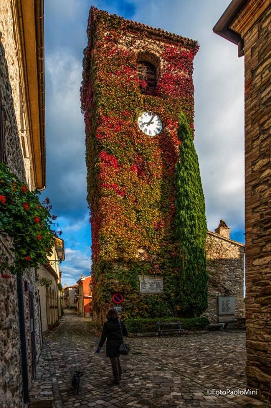 campanile di Frontino ricoperto di foglie