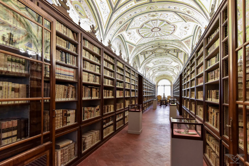 Biblioteca Mozzi Borgetti di Macerata