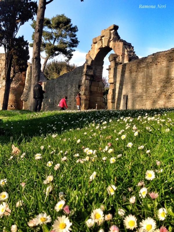 mura augustee di Fano con un arco e un prato fiorito