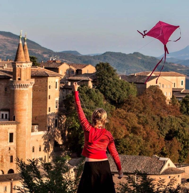 Aquilone in volo con sullo sfondo la città di Urbino
