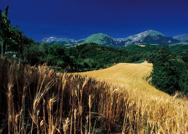 Paesaggio dei Monti Sibillini da Amandola