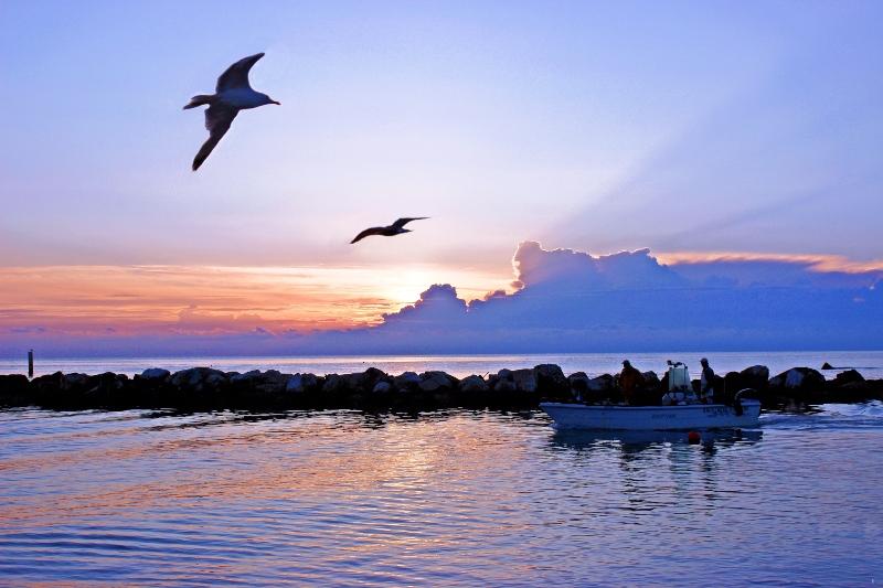 mare di Porto Recanati all'alba con barca in primo piano e gabbiani
